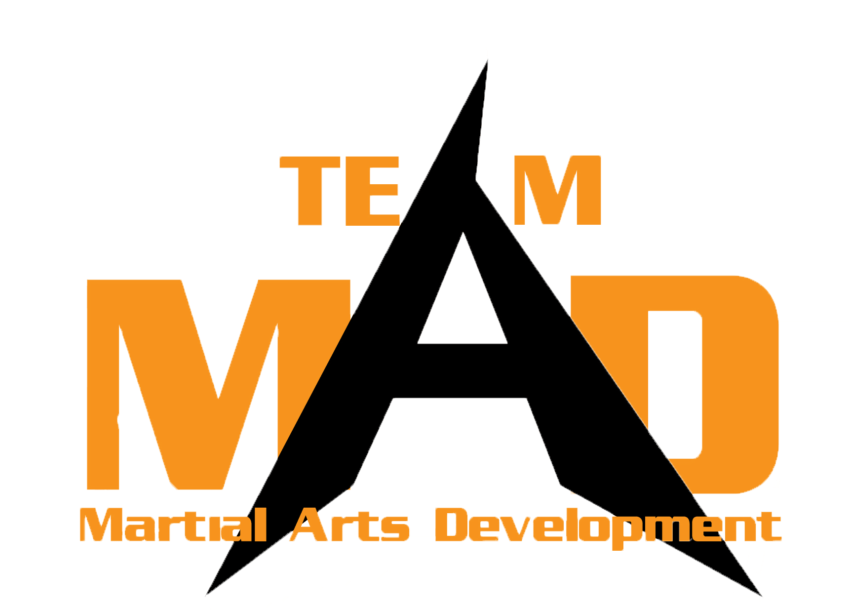 Home of Martial Arts Development Gym Online